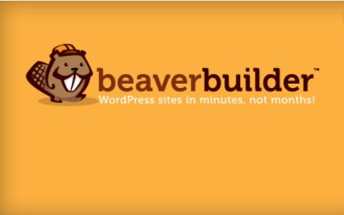 Mandatory WordPress Plugins and Tools - Beaver Builder