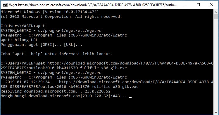 example of using wget command - wget test in windows