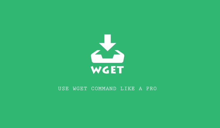 Examples of Using Wget Command for Windows and Linux