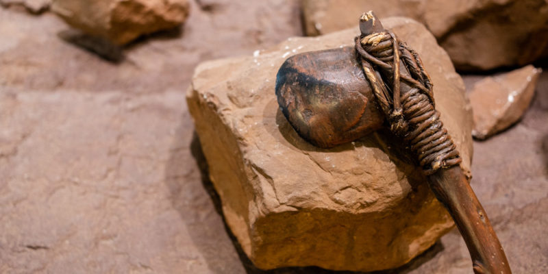 Paleolithic characteristics