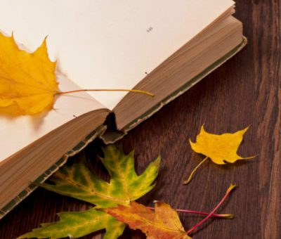 Poetry: What Is It, Classification, Characteristics and Greatest Poets List